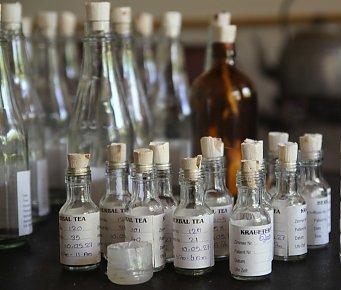 Ayurveda-herbal health tonics, www.barefootluxe.wordpress.com