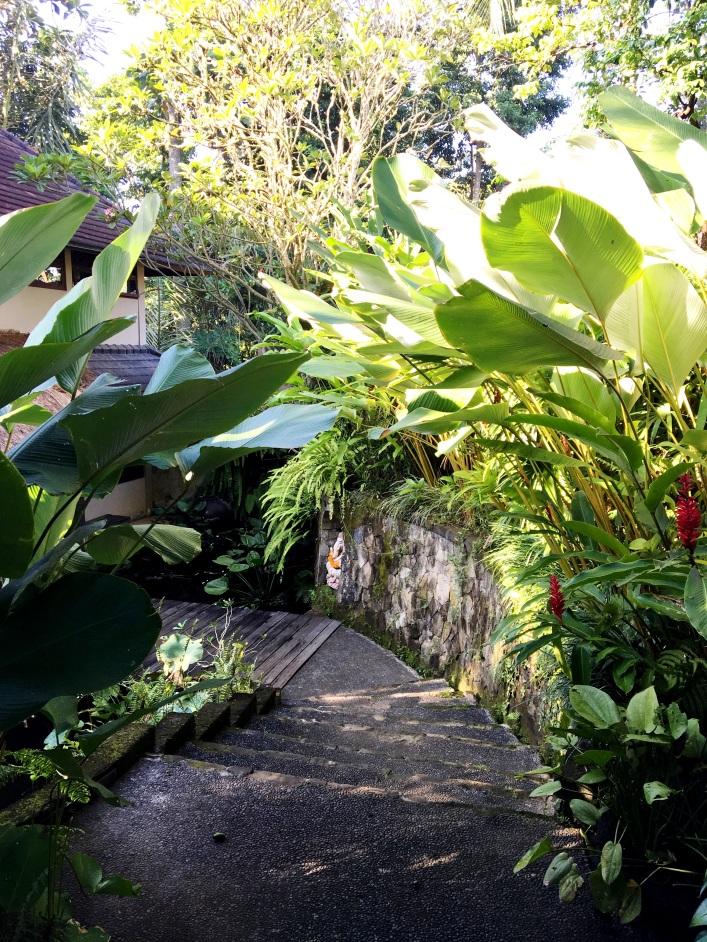 Villa Madu Ubud Bali, private villa Bali, www.BarefootLuxe.net